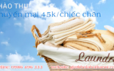 slider_giatkholahoi-300x164
